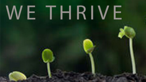 Meaning of Thrive Life